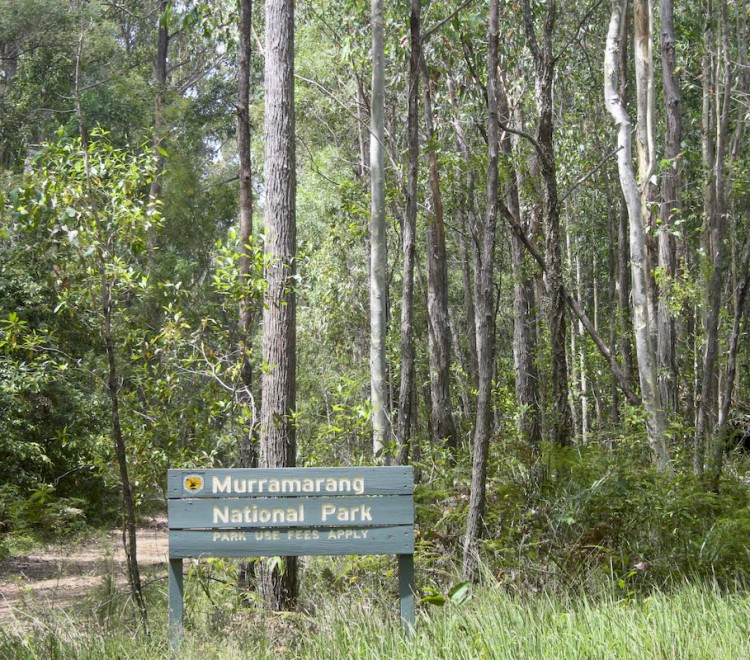 Bush walks, South Coast attractions